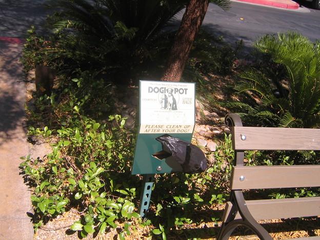 +DOG POT - Town Square 6-19-11