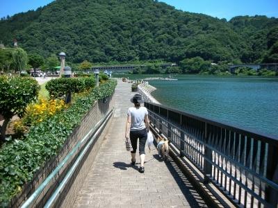 湖畔を散歩
