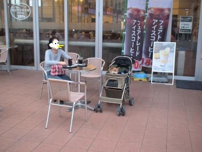 写真: 若葉台のカフェ