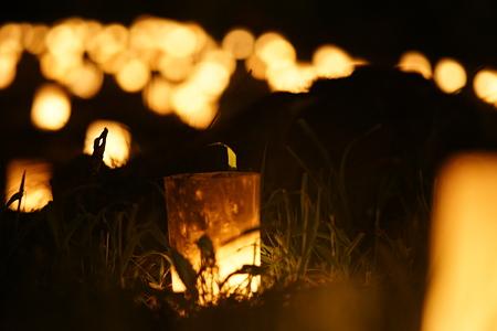 灯火踊る夜