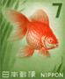 エンタ用旧金魚7